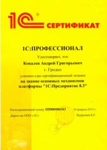 Kovalyov_AG
